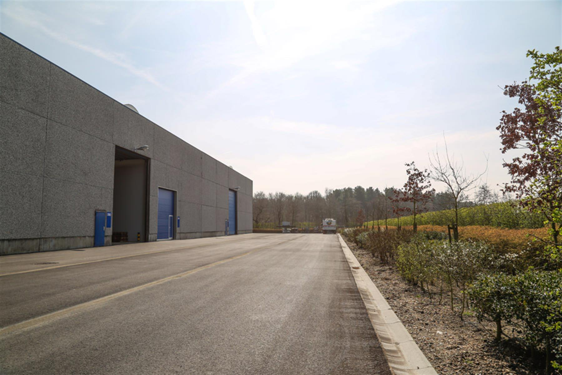 industrieel gebouw te huur KMO UNIT 1620m² MEERDERE LOADING DOCKS te KAPELLEN (B002) 1640m² - 2950 Kapellen, België 9