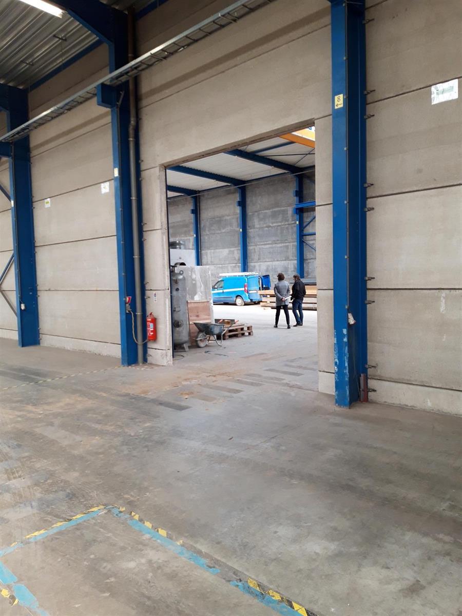 KMO-unit te huur VV2005 Magazijn 30B - 2320 Hoogstraten, België 31