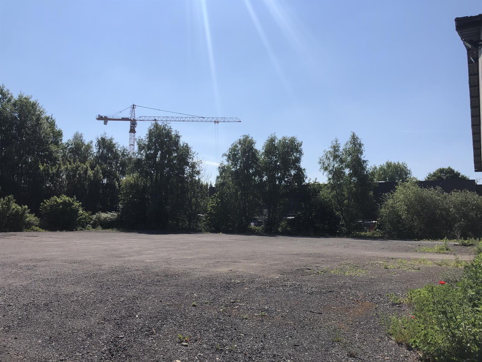 industrieel gebouw te huur Magazijn - Doornpark 38, 9120 Beveren, België 12