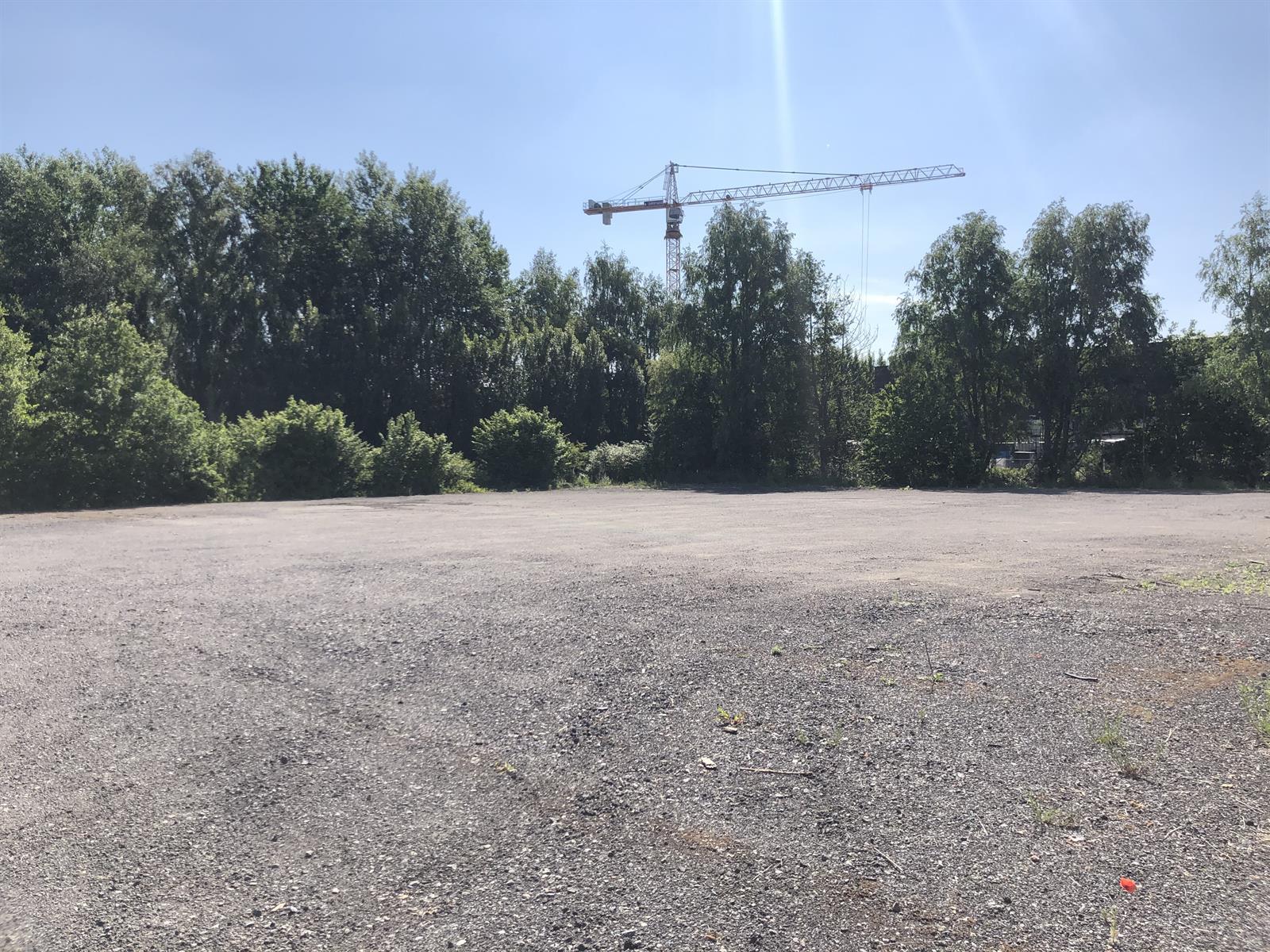 industrieel gebouw te huur Magazijn - Doornpark 38, 9120 Beveren, België 14