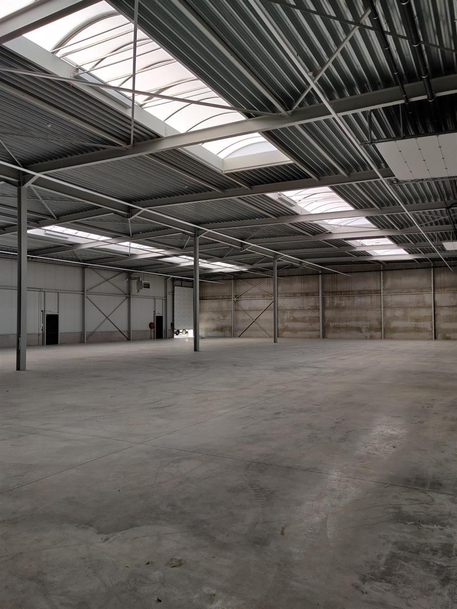 industrieel gebouw te huur A12/Halfstraat UNIT A Magazijn 780m2 Boomse Steenweg 62
