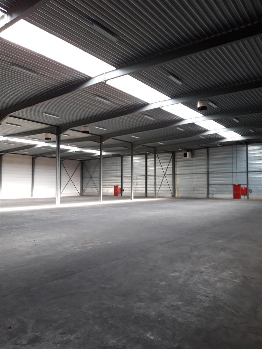 opslagplaats te huur UNIT 4 - Industriepark A 36, 2220 Heist-op-den-Berg, België 14