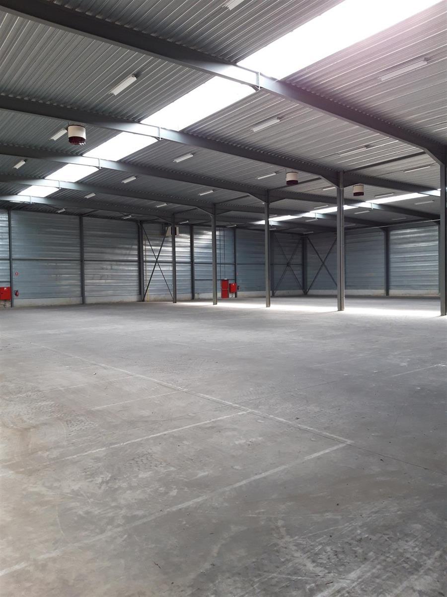 opslagplaats te huur UNIT 4 - Industriepark A 36, 2220 Heist-op-den-Berg, België 9