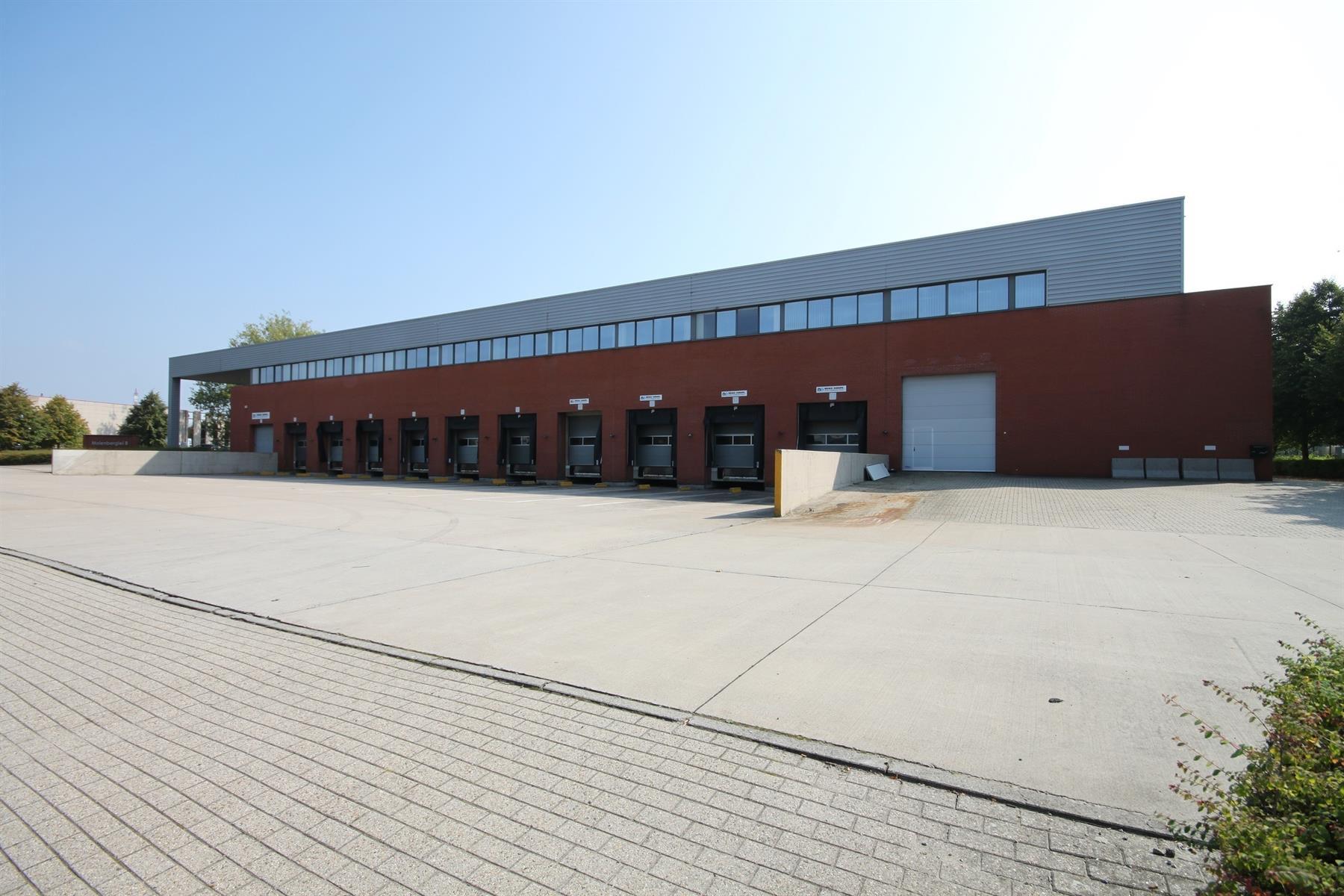 kantoor te huur I150 - Molenberglei 8, 2627 Schelle, België 2
