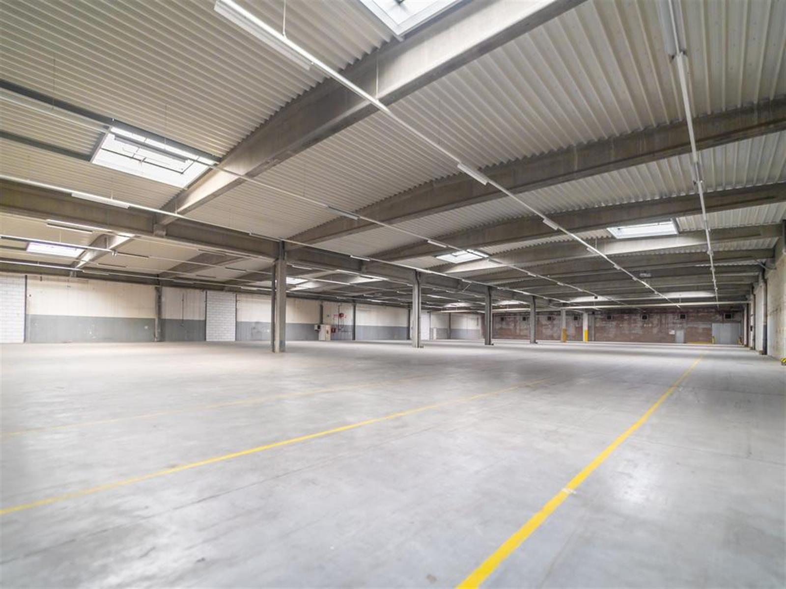kantoren & magazijn te huur I157 - Satenrozen 11-13, 2550 Kontich, België 5