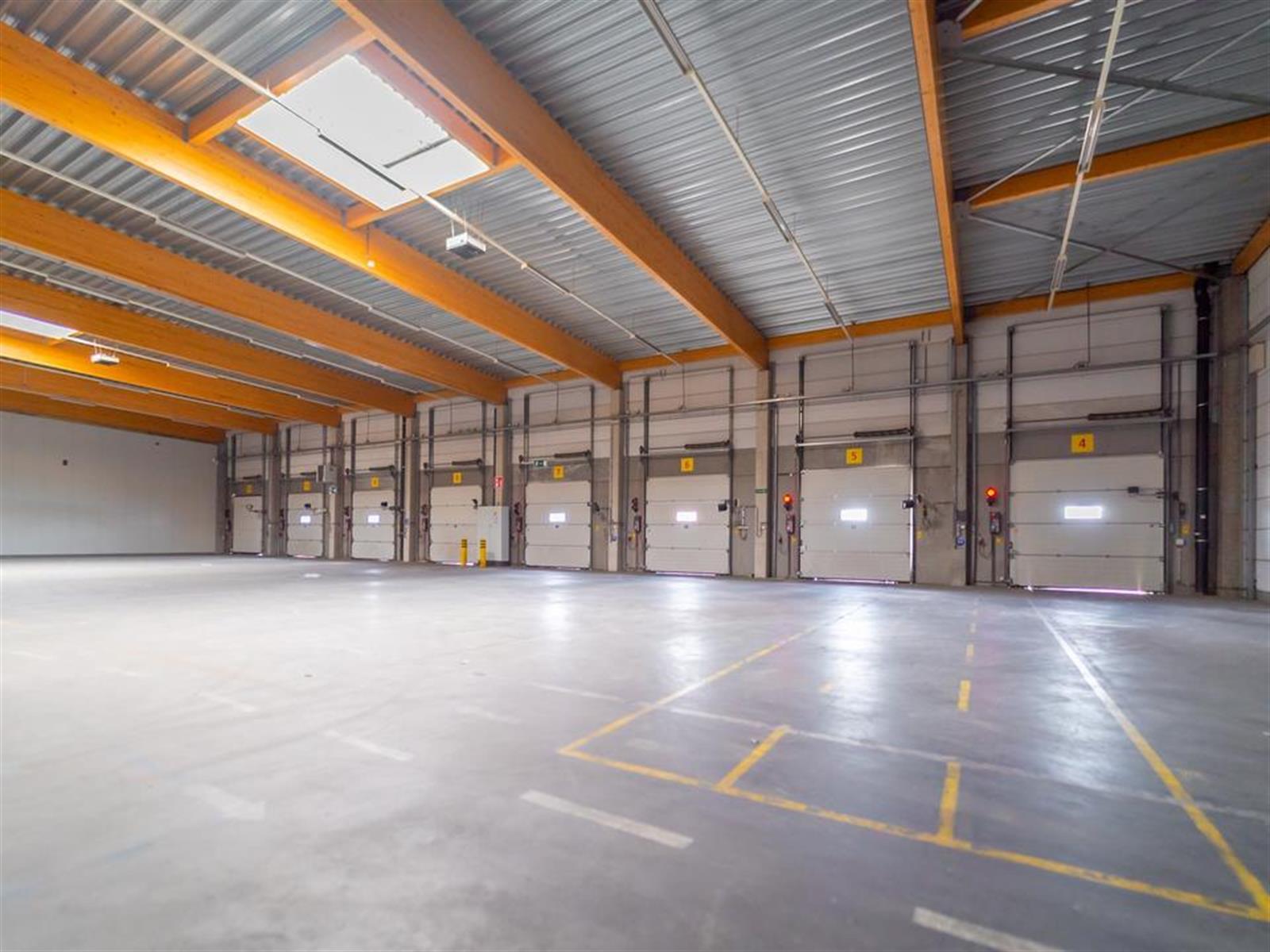 kantoren & magazijn te huur I157 - Satenrozen 11-13, 2550 Kontich, België 1